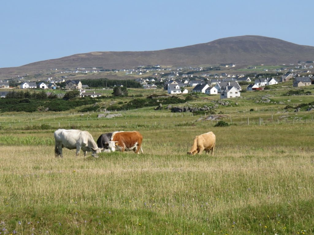 Vers Dunfanaghy